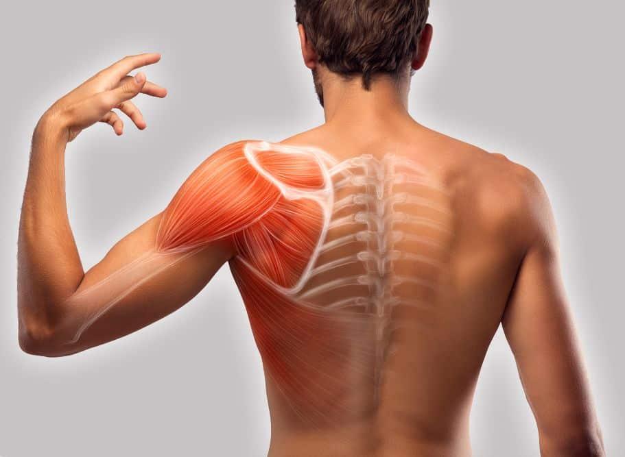 مروری بر دلایل و روشهای کاهش درد در دست و شانه, Drug Med: مجله ی فوق تخصصی دارو، پزشکی، تشخیص و کرونا ویروس ۱۹