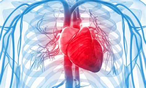 تبدیل سلولهای قلب به ضربانساز زیستی با تزریق ویروس, Drug Med