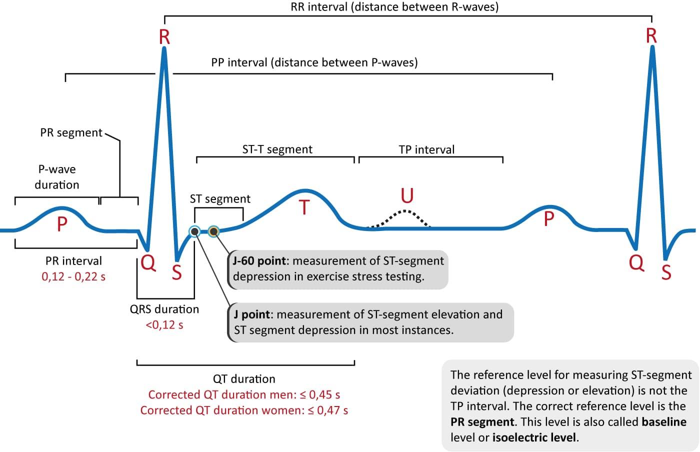 چگونه یک نوار قلب را تفسیرکنیم؟, Drug Med: مجله ی فوق تخصصی دارو، پزشکی، تشخیص و کرونا ویروس ۱۹