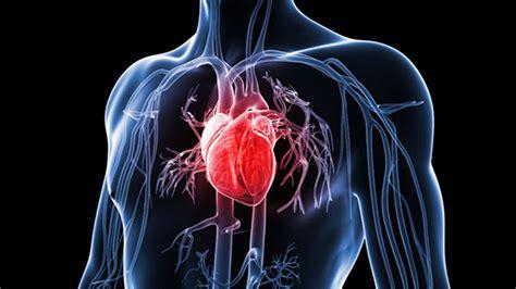 انواع بیماری های قلبی, Drug Med: مجله ی فوق تخصصی دارو، پزشکی، تشخیص و کرونا ویروس ۱۹